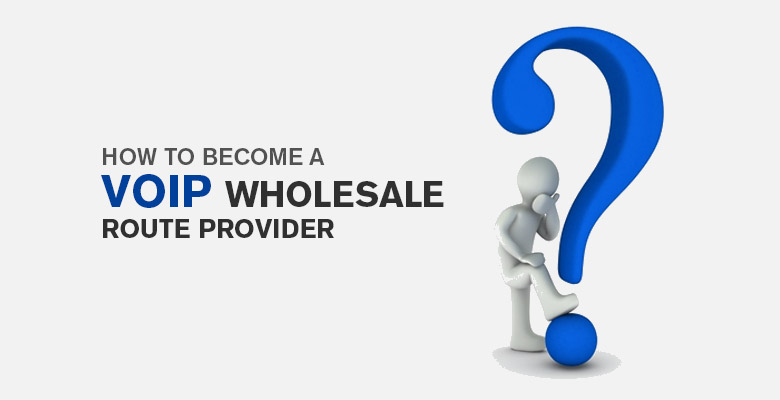 voip wholesale-routes